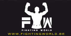 FIGHTING WORLD